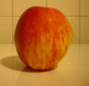 Noch können wir sie gentechnikfrei essen - die Äpfel Foto: Kerz